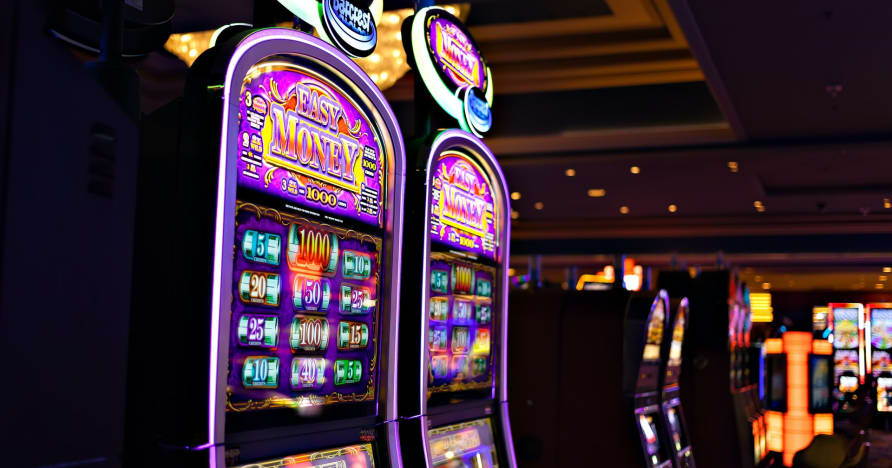 Quello che devi sapere su Play'n Go Money Spinning New Slots - Rabbit Hole Riches
